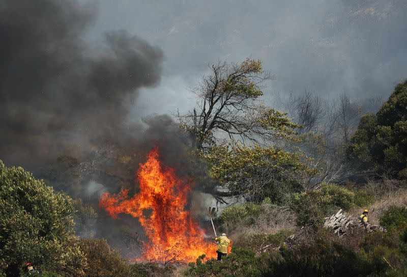Firefighters battle a bushfire that broke out on the slopes of Table Mountain in Cape Town