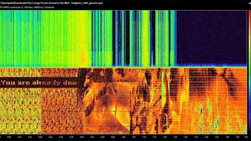 One internet user transcoded the audio using a spectrogram claiming it read