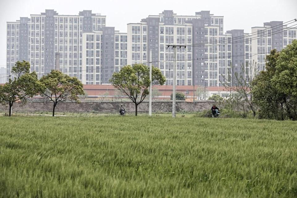 New apartment blocks coming up next to paddy fields on the outskirts of Shanghai, on Monday, April 17, 2017. Photo: Bloomberg