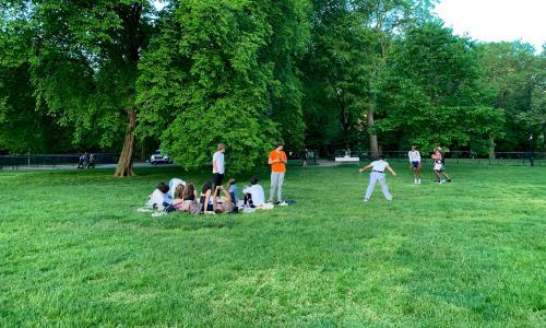 Music on a picnic? Don't, just don't