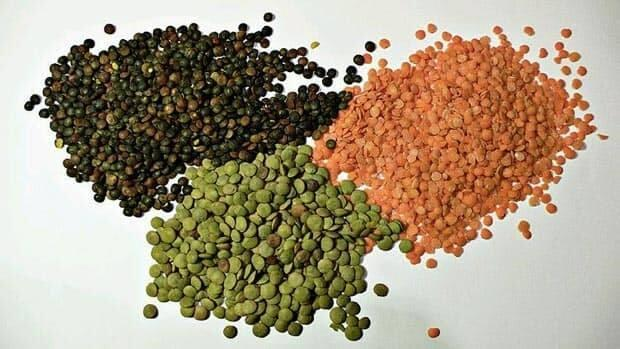 Pulse production is a potentially lucrative crop with the growing demand for plant-based protein.