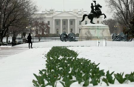 Flowers protrude from the snow as a woman stops to gaze out at the White House from Lafayette Park in Washington, U.S., March 14, 2017. REUTERS/Kevin Lamarque