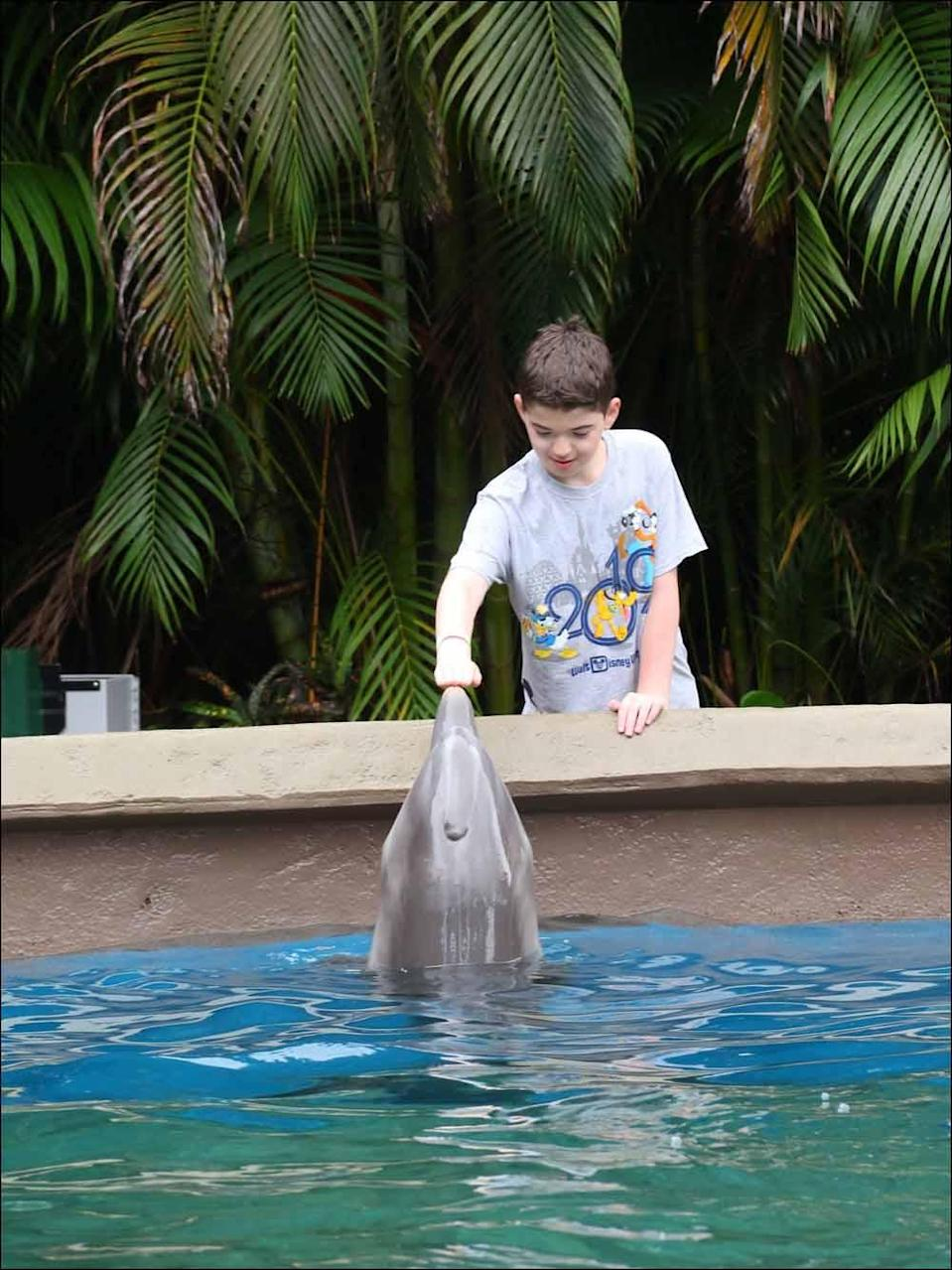 Daniel with a dolphin at the Sealife Centre in Florida, on a family holiday in May 2019. PA REAL LIFE COLLECT
