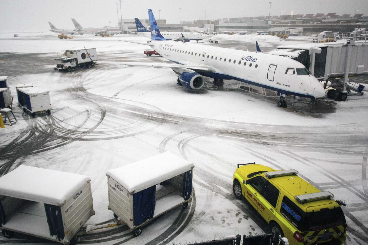 Airplanes wait at the gate at Logan Airport as weather causes flight cancellations and delays during a winter storm in Boston, Massachusetts, February 5, 2014. Air traffic in the Northeast United States was mostly halted in expectation of accumulations of a foot or more. REUTERS/Dominick Reuter (UNITED STATES - Tags: ENVIRONMENT TRANSPORT SOCIETY)