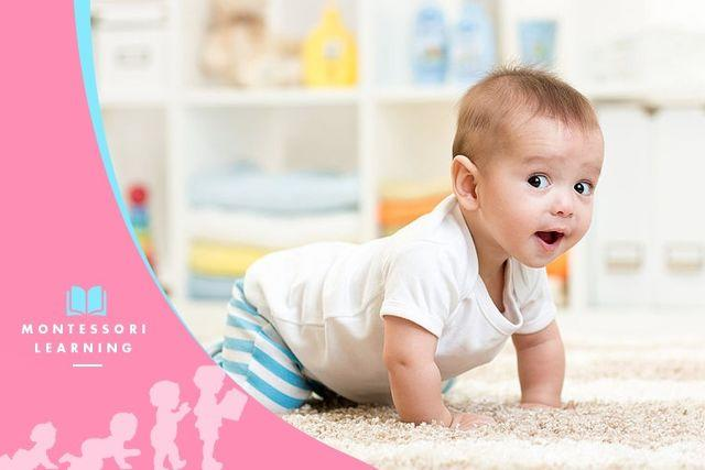 How to Develop Your Child's Brain: 6 Months