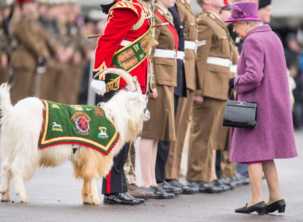 <p>In a purple coat and hat. <i>(Photo by Mark Cuthbert/UK Press via Getty Images)</i></p>