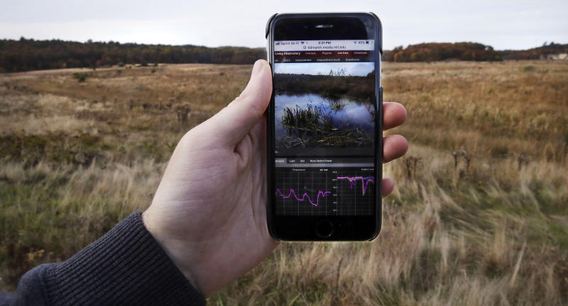Live-streaming a marshland for fun - and science