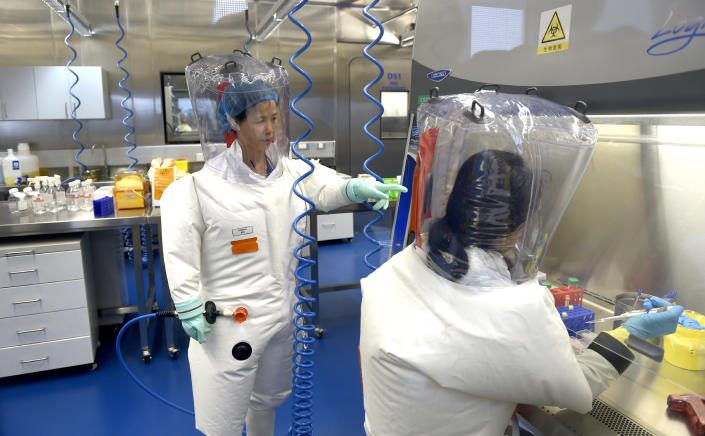FILE - In this Thursday, Feb. 23, 2017 file photo, Shi Zhengli works with other researchers in a lab at the Wuhan Institute of Virology in Wuhan in central China's Hubei province. On Dec. 30, 2019, Shi, famous for having traced the SARS virus to a bat cave, was alerted to the new disease, according to an interview with Scientific American. By late January, when Chinese authorities walled off the city of Wuhan, where the disease was first diagnosed, it was too late to stop the spread. (Chinatopix via AP)