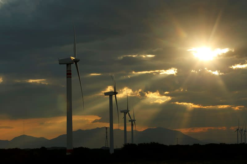 FILE PHOTO: A general view of wind turbines in Union Hidalgo, Mexico