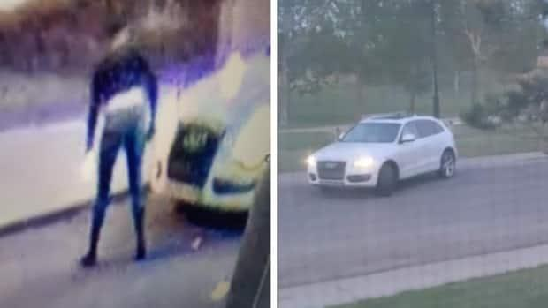 Calgary police say the suspect, seen at the left in video surveillance images, is a woman with black hair was wearing a black, long-sleeved top over a white shirt, blue jeans, and knee-high black boots. She was driving a white Audi Q5 SUV that sustained front-end damage in the collision. (Calgary Police Service - image credit)