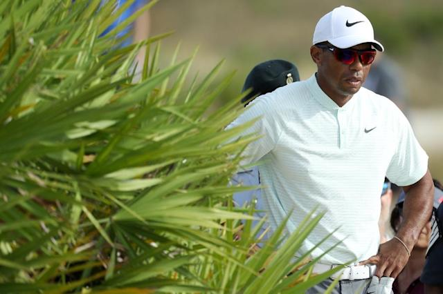 Tiger Woods waits for a rules official before hitting his second shot on the 18th hole during round two of the Hero World Challenge (AFP Photo/Rob Carr)