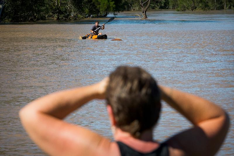 A resident watches as a property owner paddles a kayak to rescue a cow, stranded in floodwaters caused by Cyclone Debbie, in North MacLean, Brisbane