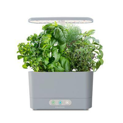 """<p><strong>AeroGarden</strong></p><p>bedbathandbeyond.com</p><p><strong>$99.99</strong></p><p><a href=""""https://go.redirectingat.com?id=74968X1596630&url=https%3A%2F%2Fwww.bedbathandbeyond.com%2Fstore%2Fproduct%2Faerogarden-trade-harvest-with-gourmet-herb-seed-pod-kit%2F5380171&sref=https%3A%2F%2Fwww.delish.com%2Fholiday-recipes%2Fvalentines-day%2Fg4526%2Fgifts-for-girlfriend%2F"""" rel=""""nofollow noopener"""" target=""""_blank"""" data-ylk=""""slk:BUY NOW"""" class=""""link rapid-noclick-resp"""">BUY NOW</a></p><p>The plant mom in your life can start her own little indoor herb garden with this kit.</p>"""