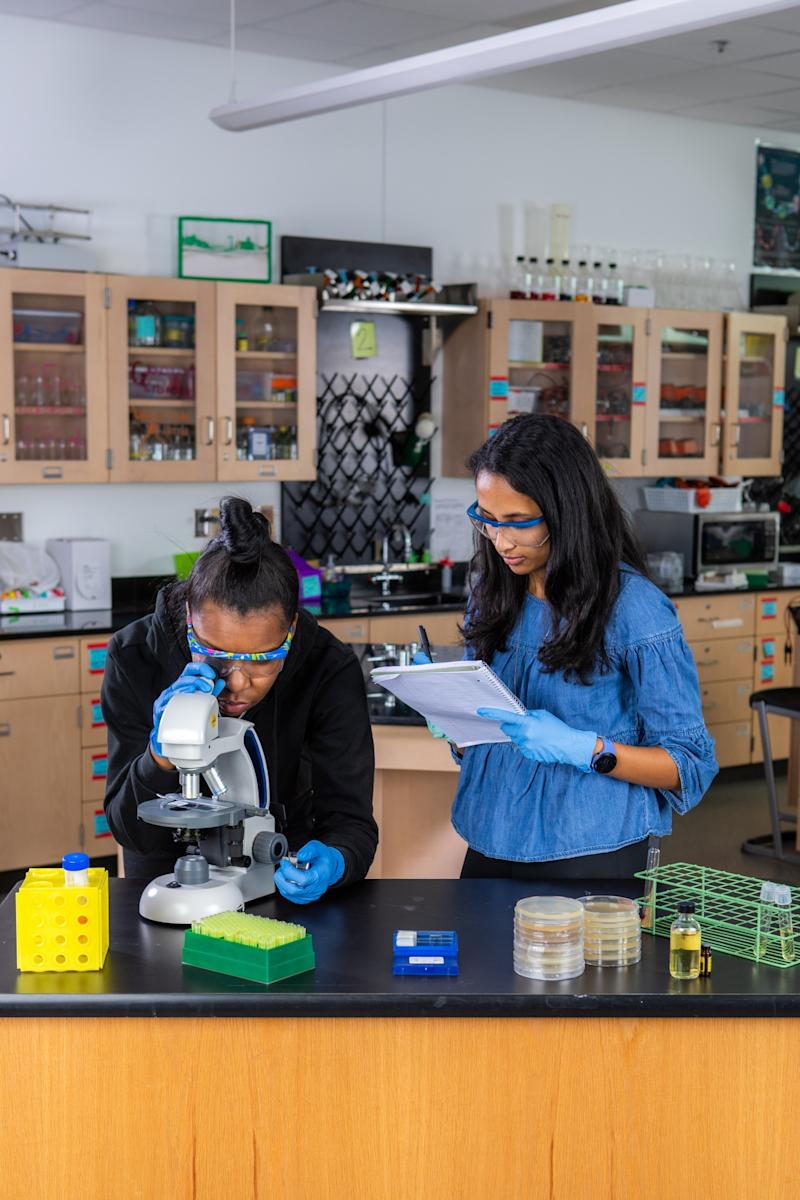 LabXchange brings the experience of working and learning science in a lab straight to students. Through virtual lab experiments, high-quality videos and online collaboration with others in the global science community, students can experience the scientific process for themselves.