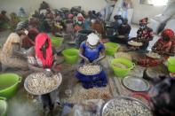 Local women process baobab fruit pulp into powder at a workshop that belongs to Baye fall community, in Ndem