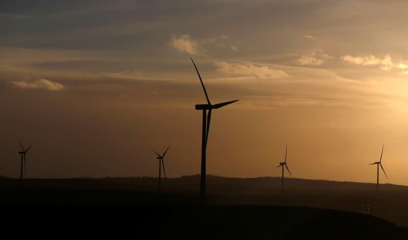 FILE PHOTO: Iberdrola's power generating wind turbines are seen at dusk in Moranchon wind farm