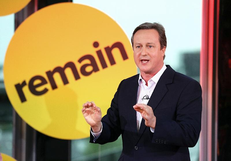 British Prime Minister David Cameron is facing a tough fight to keep Britain in the EU in a June 23 referendum (AFP Photo/Adam Gray)