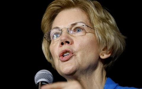 Elizabeth Warren, the Democratic senator for Massachusetts, has developed a reputation for standing up to Wall Street - Credit: AP Photo/Charlie Neibergall