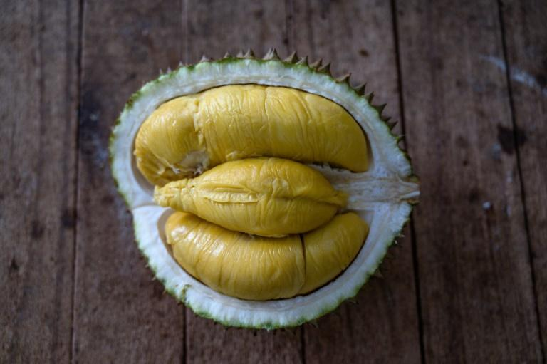 """The durian is hailed by aficionados as the """"king of fruits"""" due to its creamy, golden flesh and bittersweet flavour"""
