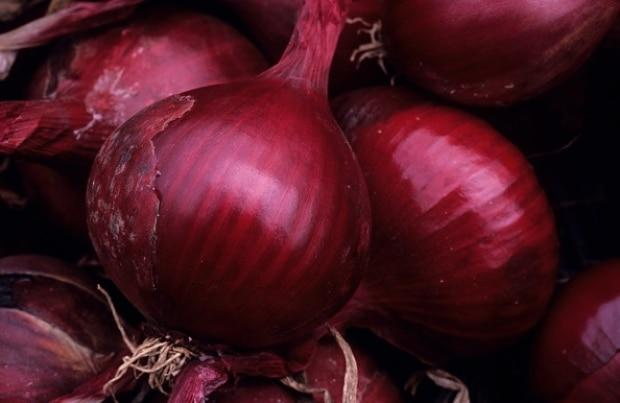 69 salmonella cases in the province linked to red onions, BCCDC says