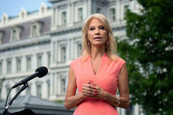 PHOTO: Senior Counselor Kellyanne Conway speaks to members of the media outside the White House in Washington D.C., July 17, 2020. (Stefani Reynolds/POOL/EPA via Shutterstock)