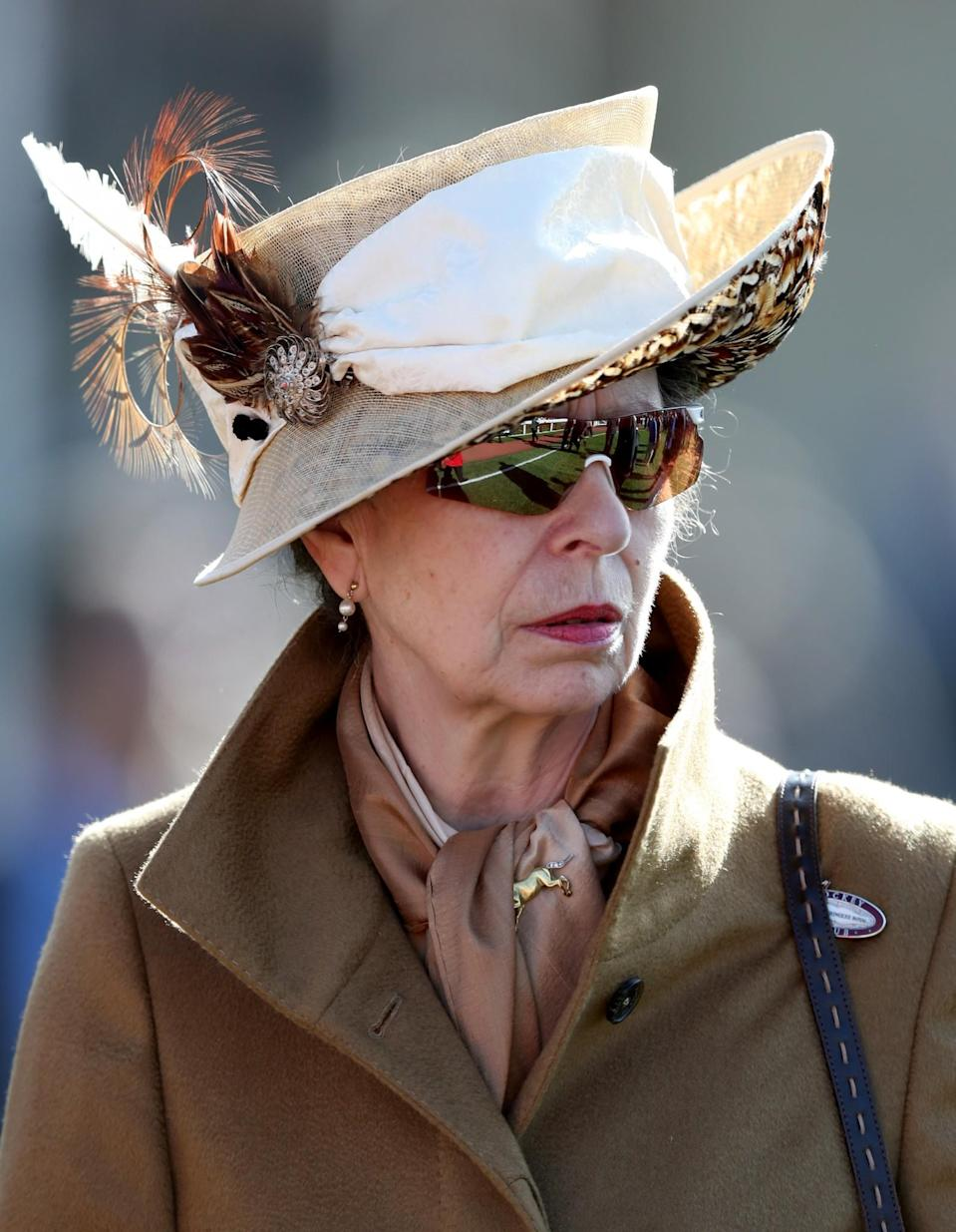 <p>The Princess Royal went for varying shades of brown, including a smart silk scarf and golden horse brooch [Photo: PA] </p>