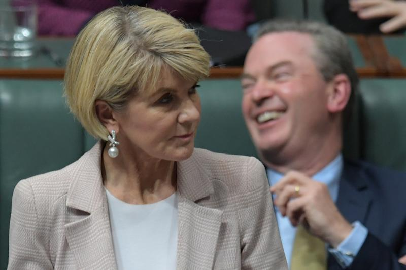 Julie Bishop condemns the leaked WhatsApp news before the liberal leader appointed Scott Morrison as new prime minister on Friday.
