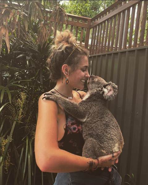 Paris appears to enjoy the local wildlife, pictured here cuddling a koala. Source: Instagram