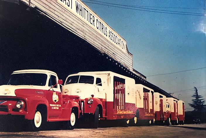 "Some of the first delivery trucks for Triangle Distributing Co., at a temporary warehouse in Whittier. Triangle is being taken over by the Anheuser-Busch brewery giant. <span class=""copyright"">(Courtesy of Peter Heimark)</span>"