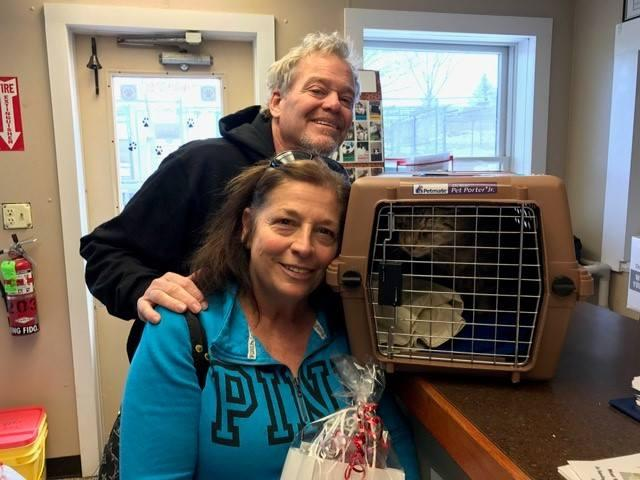 <p>Reprodução/Facebook The Real Cats at West Milford Animal Shelter </p>