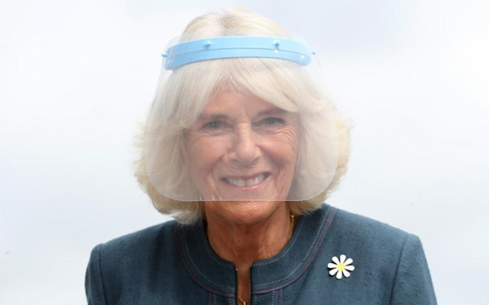 Camilla, Duchess of Cornwall, Patron of Medical Detection Dogs, wears a visor during a visit to the charity's training centre where trials are currently underway to determine whether dogs can act as a diagnostic tool of COVID-19 on September 09, 2020 in Milton Keynes, England. - Chris Jackson