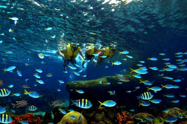 "Guests also can snorkel amongst thousands of fishes at the ""Rainbow Reef"" at Adventure Cove Waterpark, one of the two attractions of the world's largest oceanarium. (Photo courtesy Resorts World Sentosa)"
