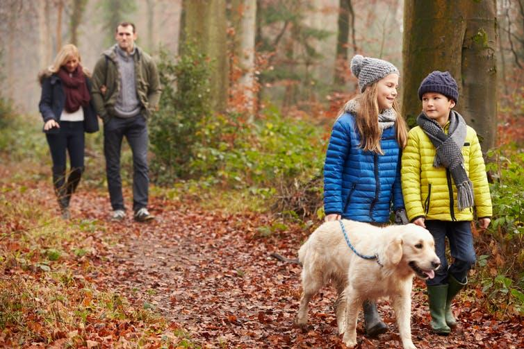 Family walking their dog in the woods during autumn.