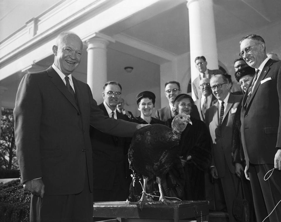 """President Eisenhower rests his hand on the 40-pound, broad-breasted Tom turkey presented to him today for his Thanksgiving dinner by the National Turkey Foundation. Said the pleased President: """"Gosh. It's a big one."""" From left: Pres. Eisenhower; Leslie W. Hubbard, Mrs. Hubbard, Mrs. Ezra T. Benson, Sec of Agriculture Ezra Taft Benson and J. Arza Adams, President of the Foundation on Nov. 19, 1956. (Photo: Bettmann/Corbis/Getty Images)"""