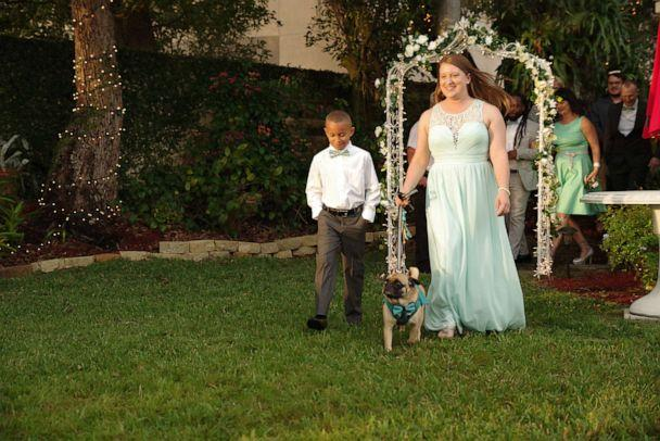 PHOTO: Each of the seven bridesmaids at Michelle Dodds' wedding was accompanied down the aisle with a rescue pug from Pug Rescue of Florida, a non-profit organization for pugs and pug mixes. (Mike Wacht Photography)