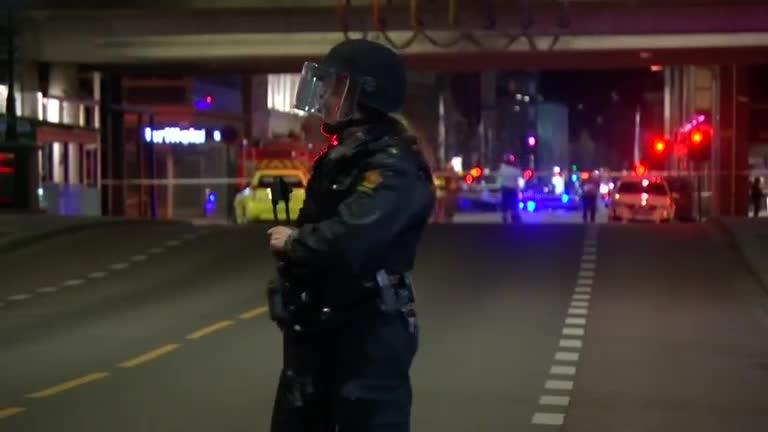 "Norwegian police set off a controlled explosion of a ""bomb-like device"" in central Oslo and a suspect is being held in custody, as Sweden questions seven people over deadly truck attack. Scarlett Cvitanovich reports."