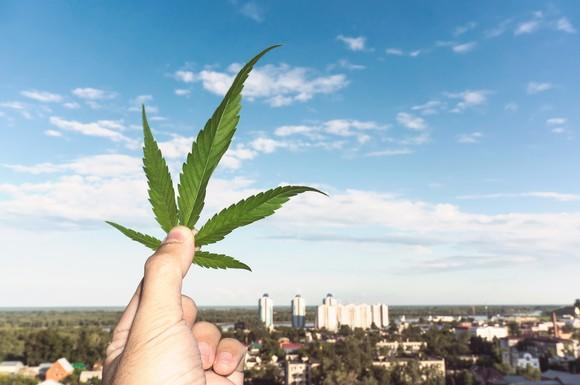 A person holding up a marijuana leaf against a blurry background of a town.