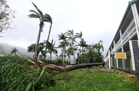 A tree lies on the ground near a motel after falling during strong winds from Cyclone Debbie at Airlie Beach, located south of the northern Australian city of Townsville, March 28, 2017. AAP/Dan Peled/via REUTERS