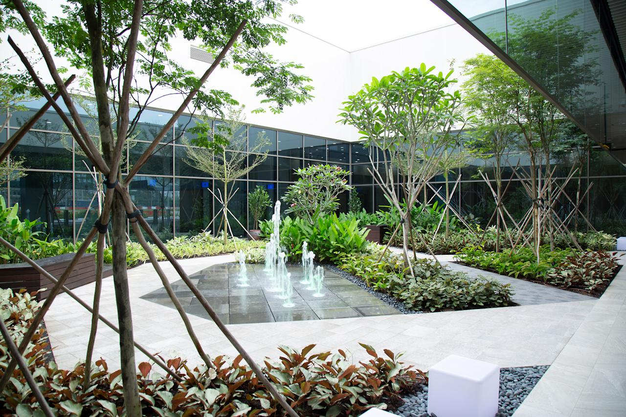 <p>A feature garden at the Seletar Airport's upcoming new passenger terminal. (PHOTO: Yahoo News Singapore / Dhany Osman) </p>