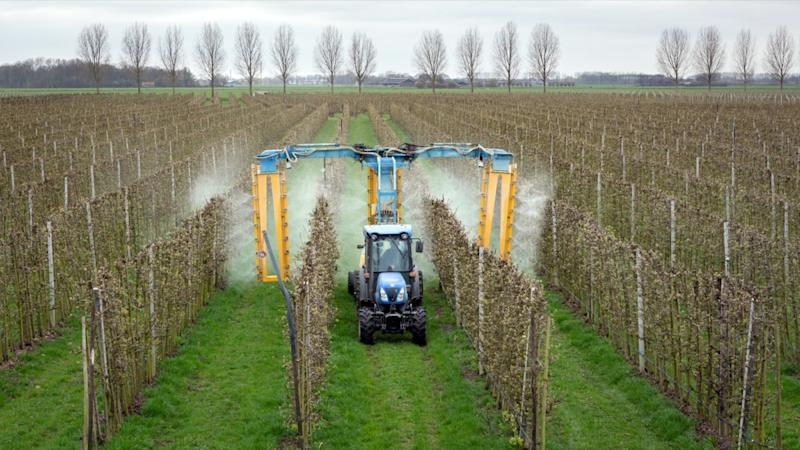 Modern orchard sprayer spraying insecticide or fungicide on his apple trees.