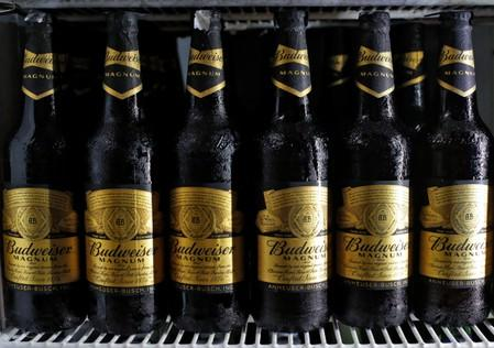 Budweiser beer bottles are seen in a cooler at a liquor shop in Kolkata