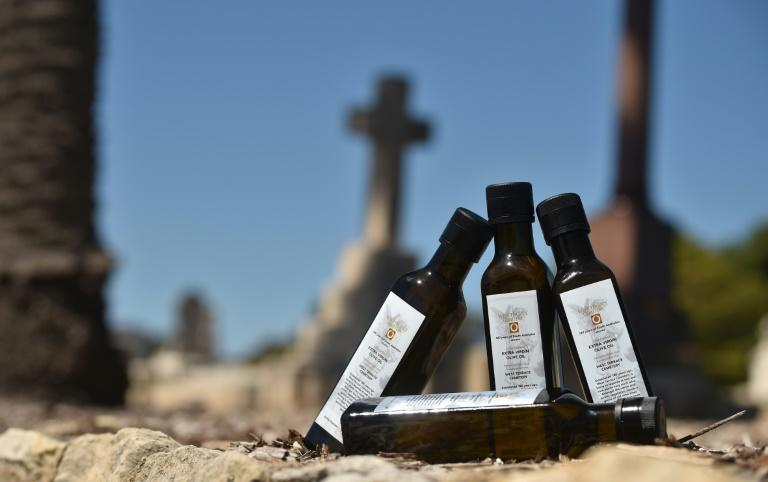 This year's limited-edition bottles of olive oil, released to mark the West Terrace Cemetery in Adelaide's 180th anniversary, sold out in a flash despite their unusual source