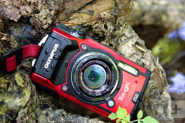 The Best Point And Shoot Cameras You Can Buy