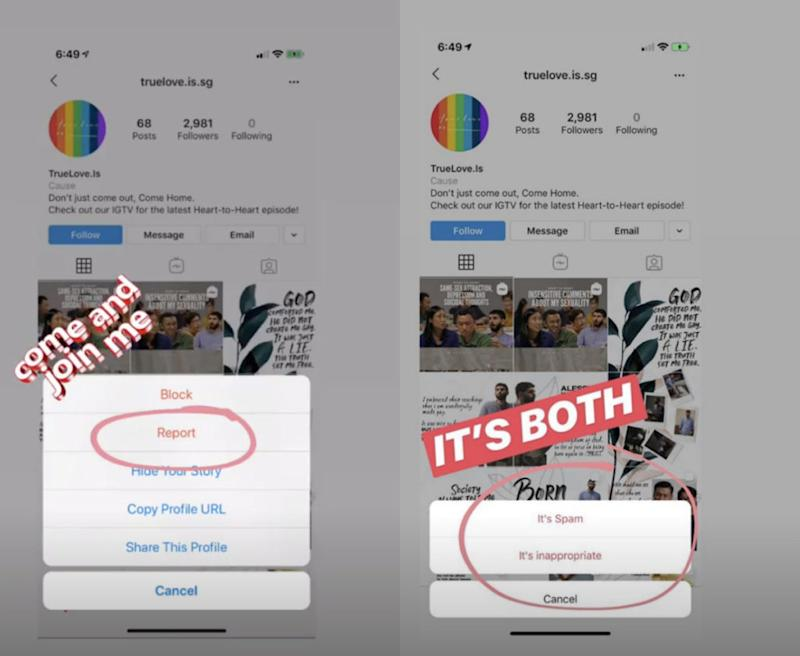 Screenshots of Instagram stories asking others to report the TrueLove.Is account. (Photos: Instagram/@messiahabalos)