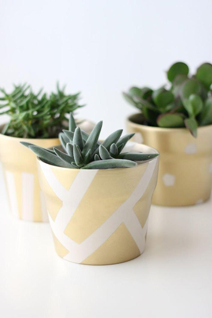 """<p>Why worry about finding pots of gold this St. Patrick's Day when you can make your own with this simple, elegant project?</p><p><strong>Get the tutorial at <a href=""""https://www.deliacreates.com/gilded-succulent-pots-st-patricks-day/"""" rel=""""nofollow noopener"""" target=""""_blank"""" data-ylk=""""slk:Delia Creates"""" class=""""link rapid-noclick-resp"""">Delia Creates</a>. </strong></p><p><strong><a class=""""link rapid-noclick-resp"""" href=""""https://www.amazon.com/Krylon-K01000A07-Premium-Metallic-Spray/dp/B000BZX3H6/?tag=syn-yahoo-20&ascsubtag=%5Bartid%7C2164.g.35012898%5Bsrc%7Cyahoo-us"""" rel=""""nofollow noopener"""" target=""""_blank"""" data-ylk=""""slk:SHOP GOLD SPRAY PAINT"""">SHOP GOLD SPRAY PAINT</a><br></strong></p>"""