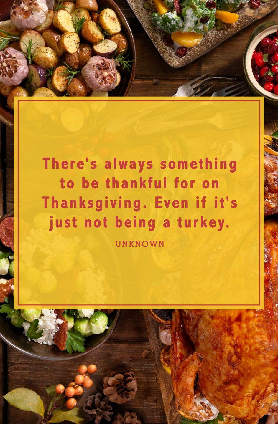 "<p>""There's always something to be thankful for on Thanksgiving. Even if it's just not being a turkey.""</p>"