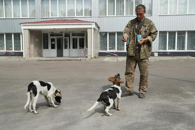 <p>Sergey Shamray, a worker at the Chernobyl nuclear power plant, tosses pieces of bread to stray dogs outside the workers cafeteria inside the exclusion zone at the Chernobyl plant on Aug. 18, 2017, near Chernobyl, Ukraine. (Photo: Sean Gallup/Getty Images) </p>