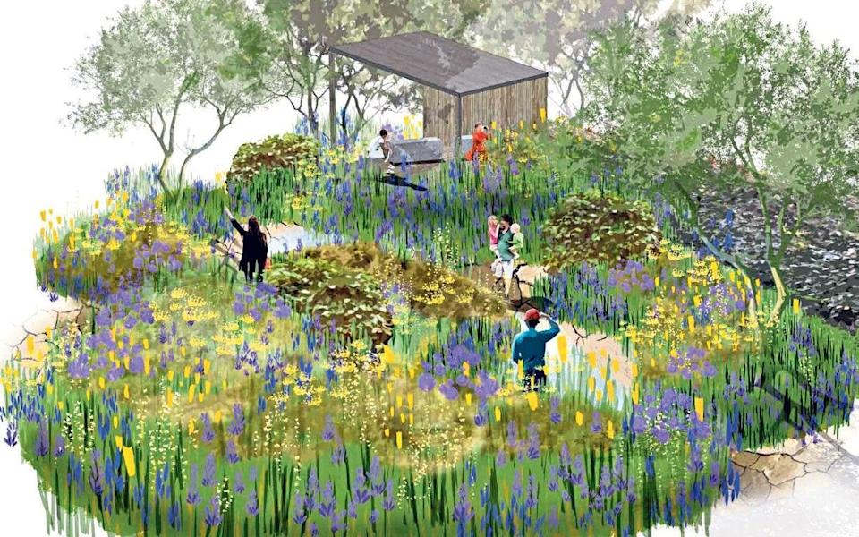 Drawing inspiration: an artist's sketch of thegarden - Royal Horticultural Society