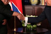 U.S. President Donald Trump shakes hands with North Korea's leader Kim Jong Un before their bilateral meeting at the Capella Hotel on Sentosa island in Singapore June 12, 2018. REUTERS/Jonathan Ernst