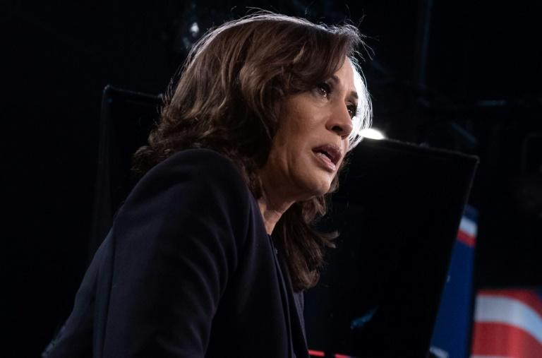 As the only black woman in Democratic White House race, Kamala Harris stole the show at the candidates' first debate by attacking Joe Biden's record on race relations (AFP Photo/SAUL LOEB)